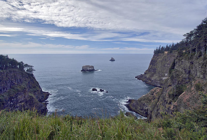 Cape Meares to West 2010 (6099)