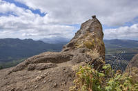 Saddle Mountain (2884)